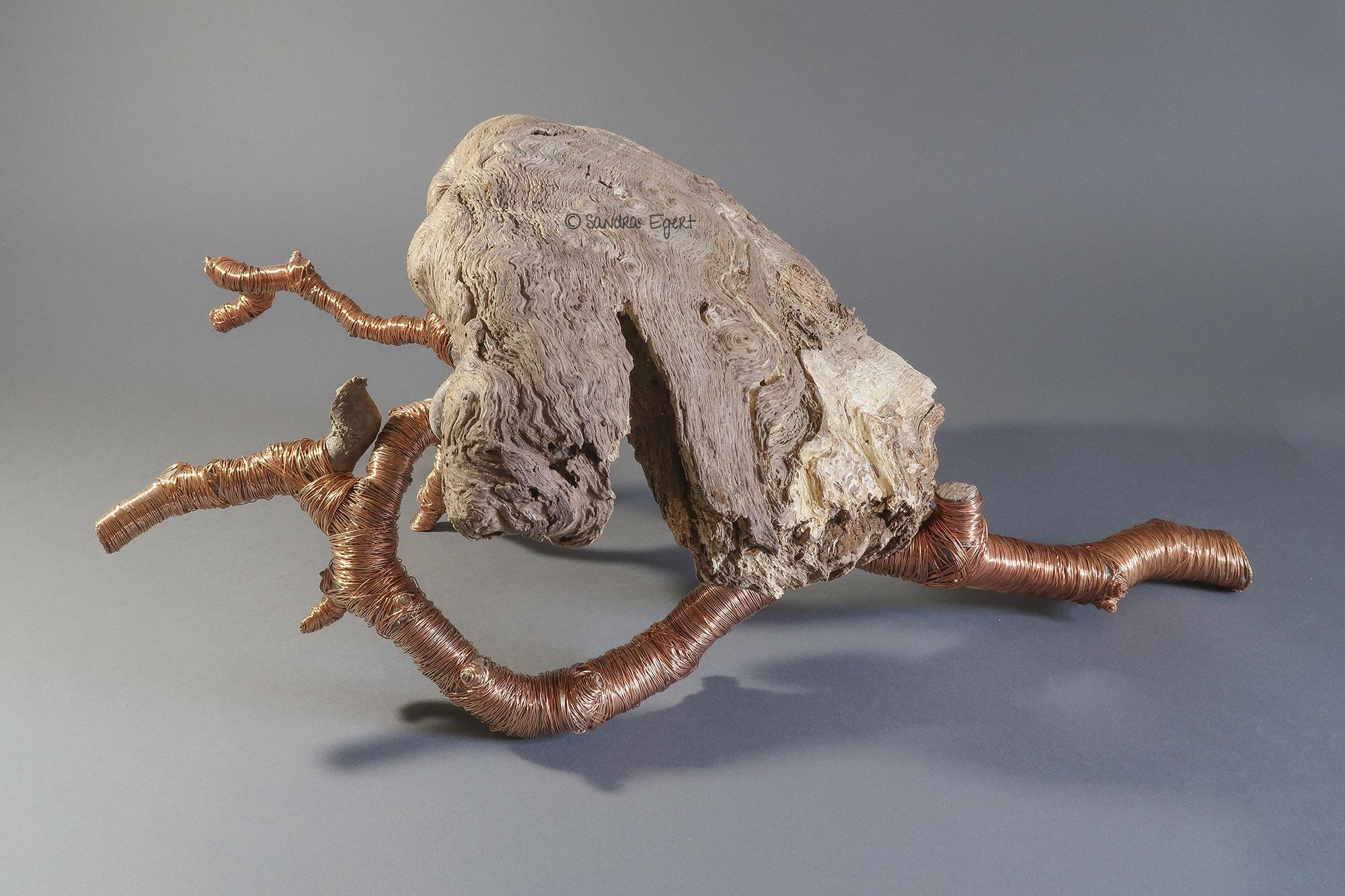 """Wildholzobjekt """"Unfold"""", Ansicht 3, L 55 cm x B 37 cm x H 23 cm, Maserknolle unbekannter Holzart, Ast, Kupferdraht"""