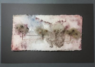 Waldreben-Quartett Ansicht 1